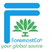 ForemostCo Logo